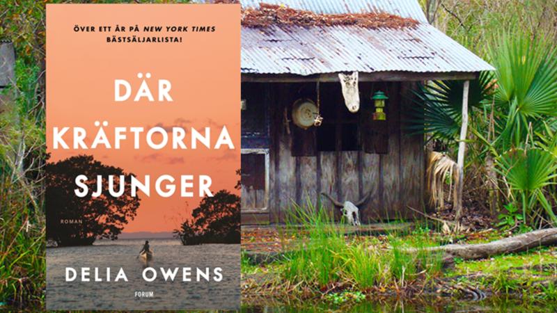 Uppväxtskildring med inslag av kriminalroman – en bok om att överleva